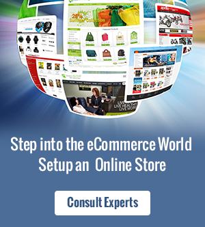 Setup Online Business