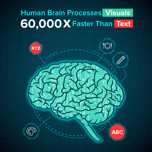 brain-processes-visuals-faster