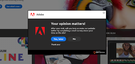 13_Adobe