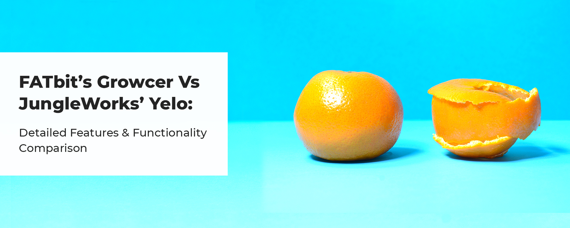 FATbit's Growcer vs JungleWorks' Yelo: Which one is the best for building a Grocery Marketplace?